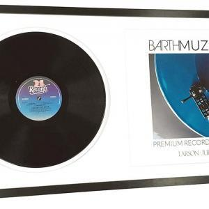 Lijstopmaat music premium Disc and sleeve